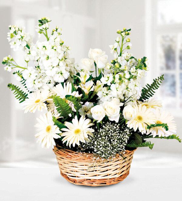 Beyaz sepet çiçek