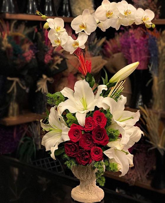 orkide ,gül ,söz çiçeği ,istanbul beylikdüzü çiçekçiler,
